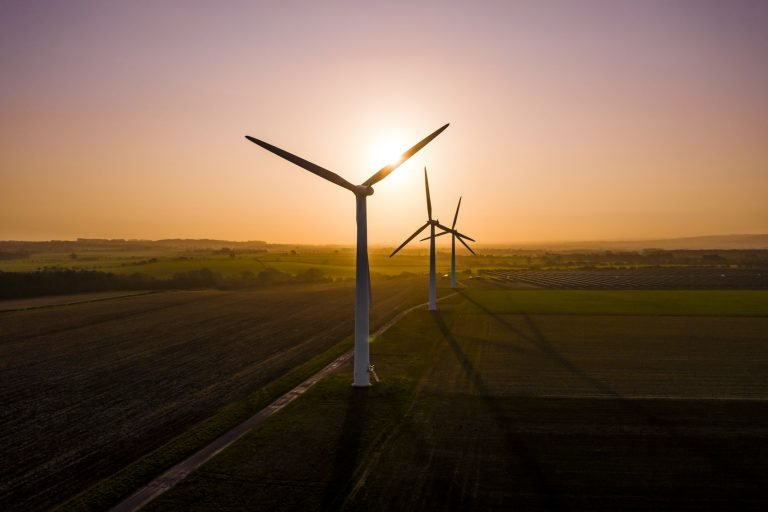Renewable Energy and Fuel A Future Prospective in Recent Global Situation
